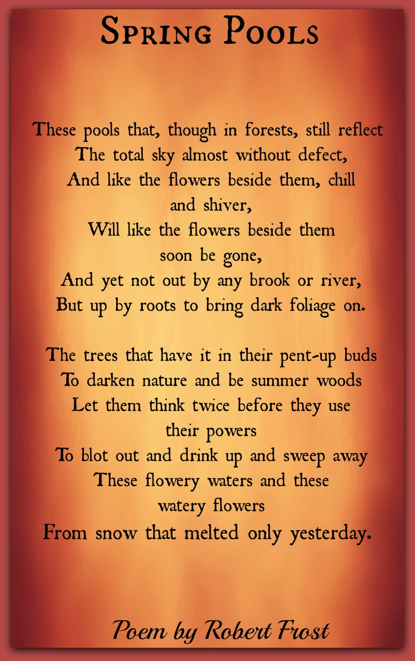 What is the function of nature in Robert Frost's poetry?