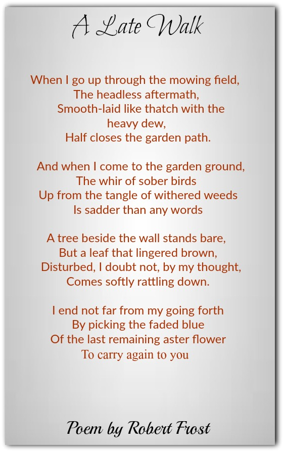 Robert Frost Poems Classic Famous Poetry